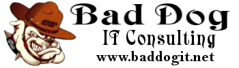 Bad Dog IT Consulting, LLC